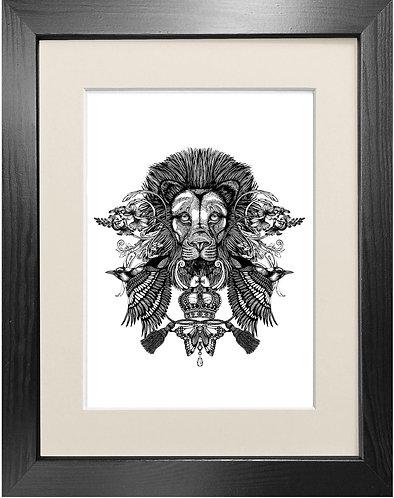 'The Regal Lion' - Fine Art Print