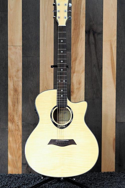 Combo guitare acoustique / étui souple GS-980
