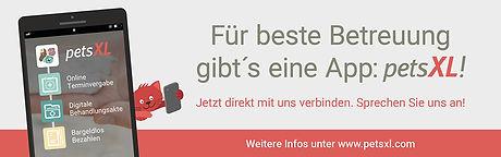 Websites_Banner_Verlinkung_zu_pestXL.jpg