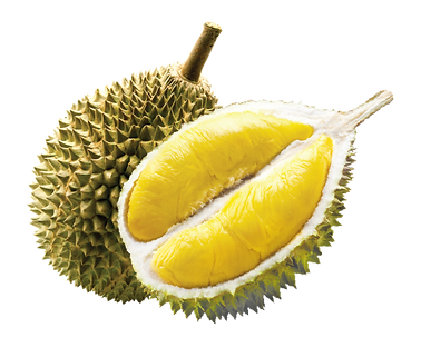 Malaysia-Fresh-Fruit-of-Musang-King-Duri