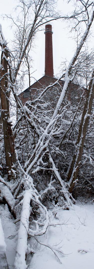 Luminen rämeikkö, jonka takana tehtaan piippu ja rakennus.