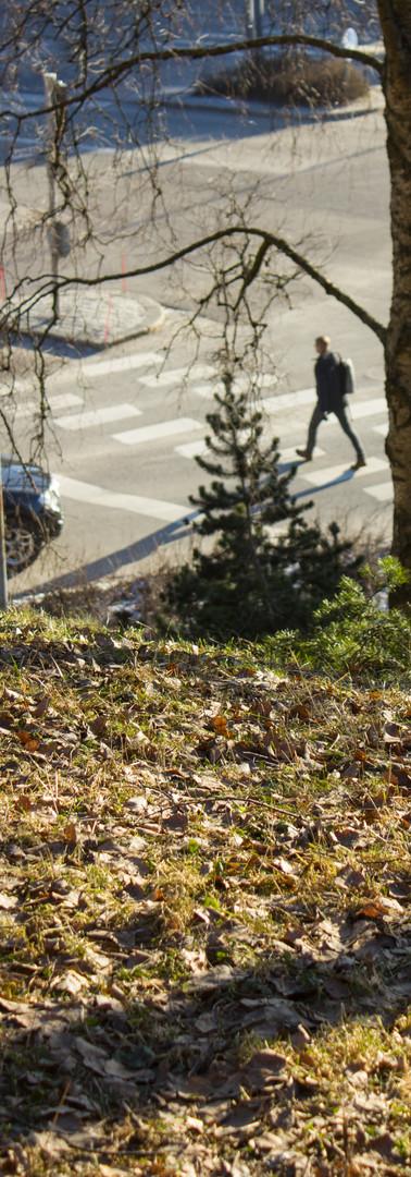 Yläviistosta kuvattu suojatietä pitkin kävelevä henkilö, etualalla vihreää nurmea.