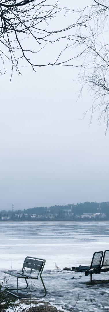 Niemi järven rannassa, keskellä kaksi tyhjää penkkiä ja vinossa seisova roskapönttö. Reunoilla lehdettömiä koivuja.