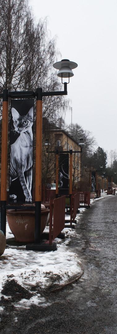 Mäki-Matin läpi johtava lumisohjoinen kävelytie.