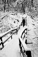 Lumen peittämät pitkospuut, joita pitkin ihminen loittonee kohti portaita ja metsikköä