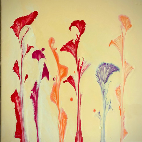 Red & Orange Flowers