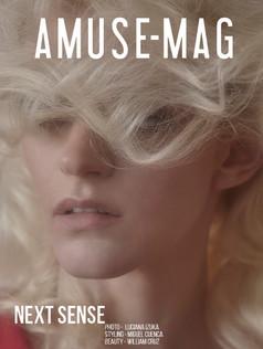 AMUSE-MAG
