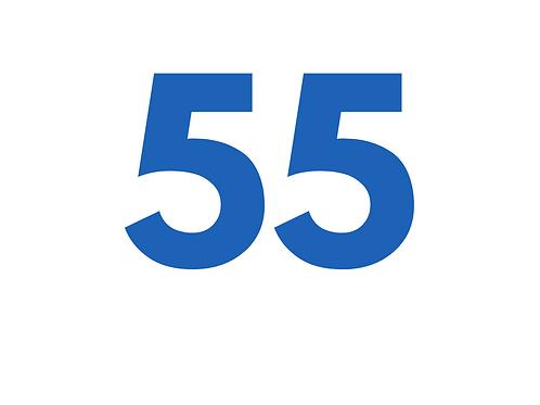 55 FOTOS DE BIJUTERIA OU SEMIJOIA