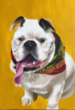 acrylicbulldog.jpg