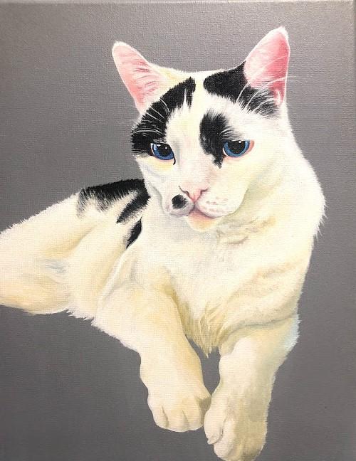 Chill Cat 2020