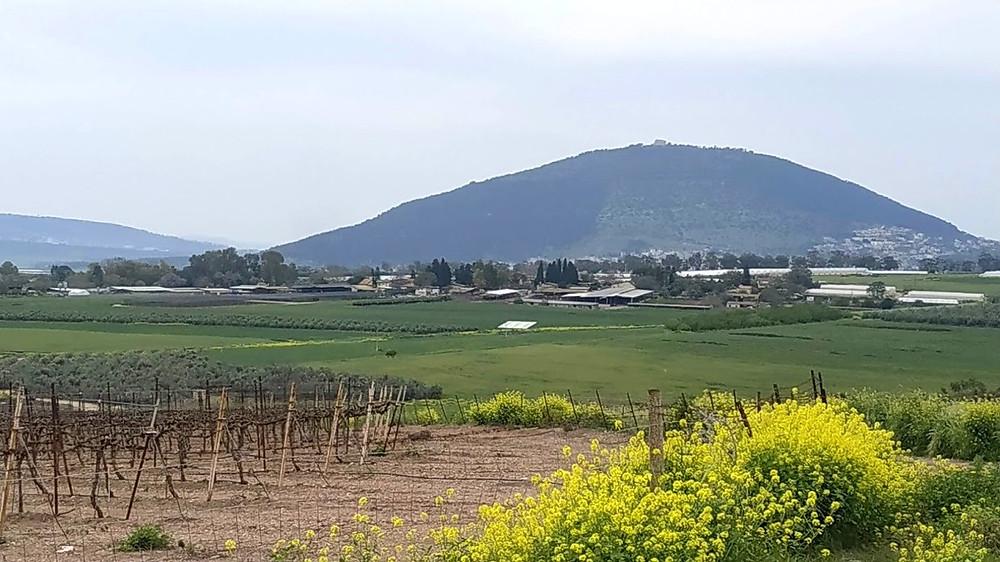 הר תבור, שדמות דבורה, כפר תבור