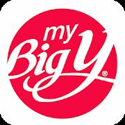 big y.webp