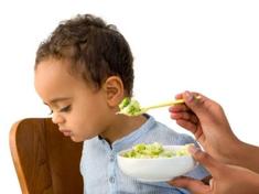 Oral Sensory Motor & Feeding Therapy