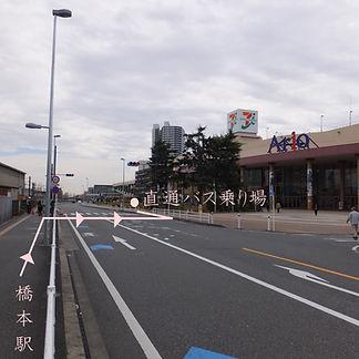 image3892.jpg
