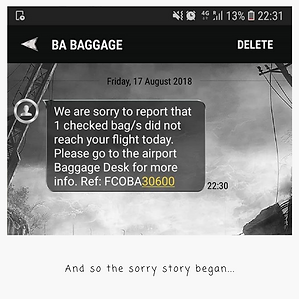 Baggage Text.png