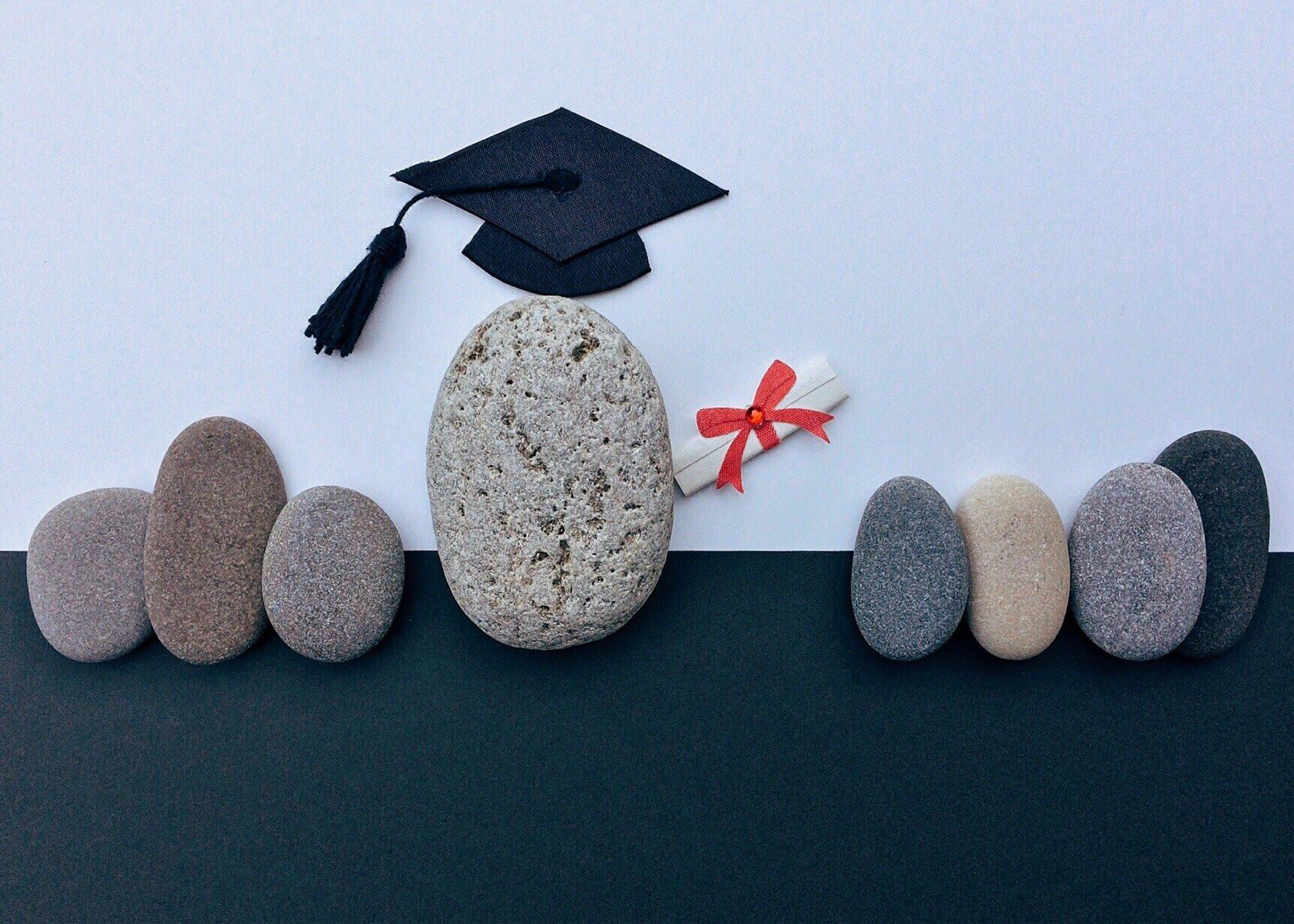 進深教育及專業選擇
