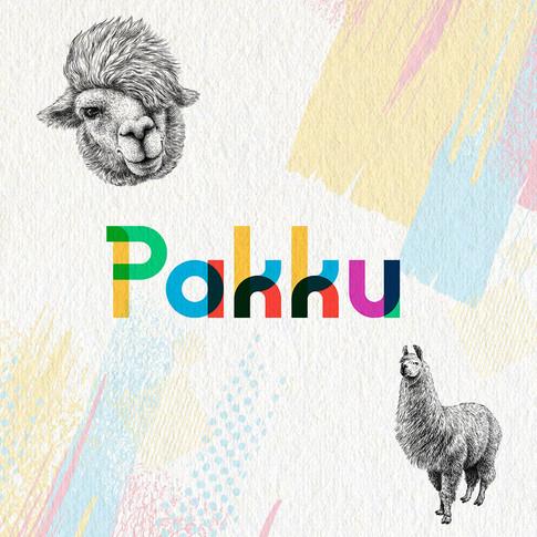 Pakku - Digitales Mentoring-Programm für finanzielle Bildung