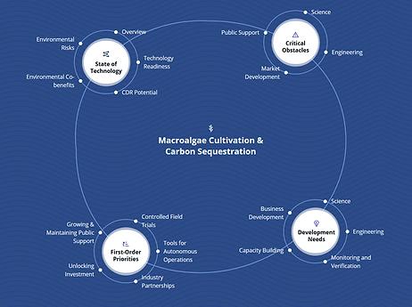 new macroalgae road map.png