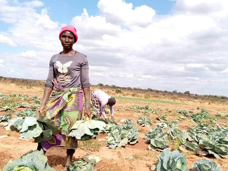 CLIMATE CHANGE  POSES A THREAT TO THE SUSTAINABILITY OF FOOD PRODUCTION