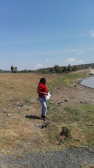 Strategic Environmental Assessment in Naivasha , Kenya