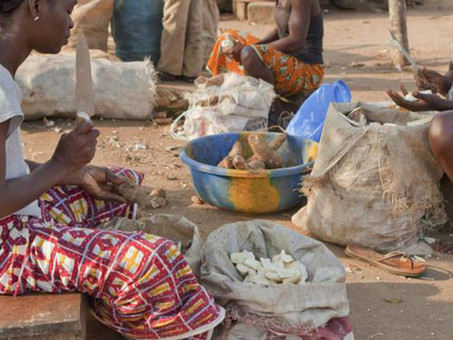 ARE ALTERNATIVE LIVELIHOOD PROJECTS IMPROVING THE WELFARE OF THE VULNERABLE COMMUNITIES