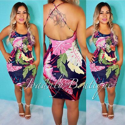 Solamente Dress