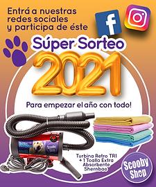 SORTEO WEB.png