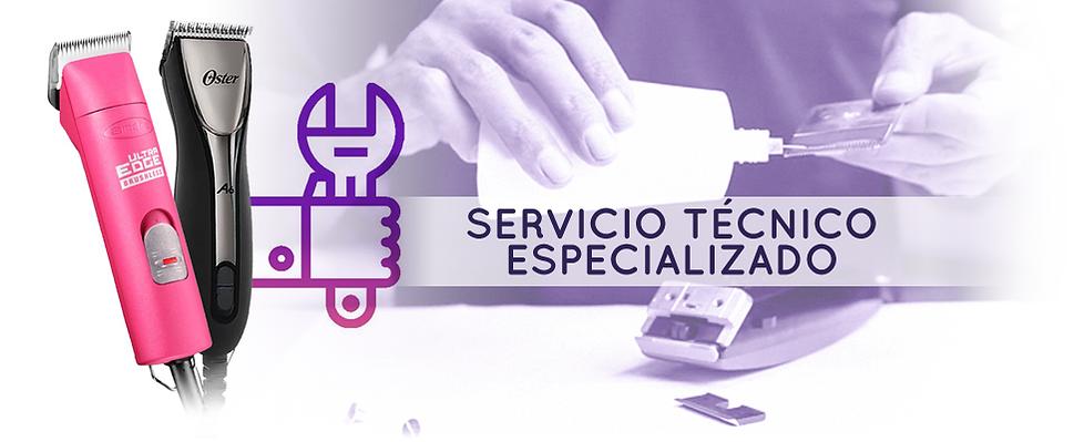 TITULO SERVICIO TECNICO NUEVO.png