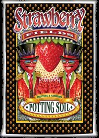 strawberryfields_e48117758cb031d6a816f2a