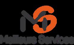 ms_logo_1