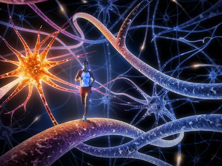 El ejercicio aeróbico y la plasticidad cerebral en Parkinson