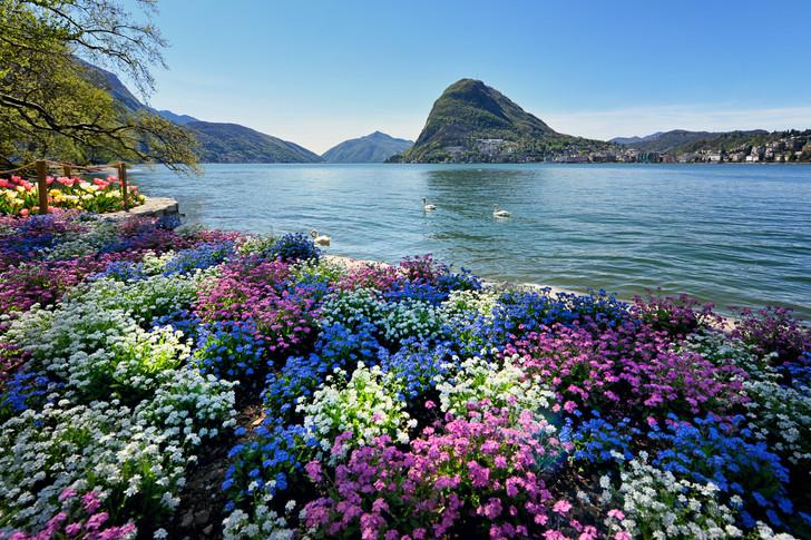 Lugano-6.jpg