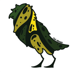 Caique Bird
