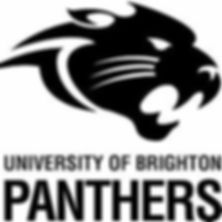 Brighton Panthers Cheerleading