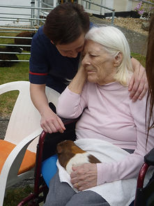 Shedfield Lodge, Animals, Pets, Therapy, Outdoors, Activity, Stimulation, Care, Dementia, Family, Dignity, Respect, Garden, Rural, Hampshire,