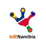 TV2Namibia Logo.png