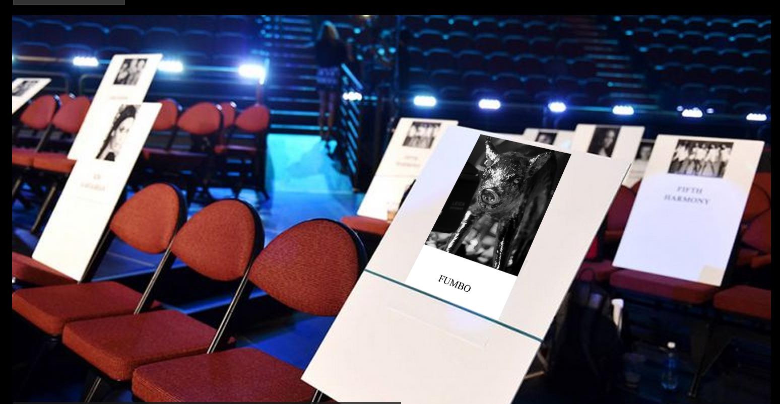 FUMBO VMA seatcard