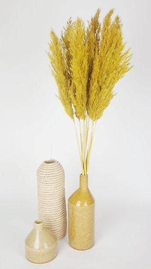 Pampas Chantus Yellow