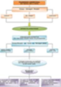 fluxograma ead interatividade 2.jpg