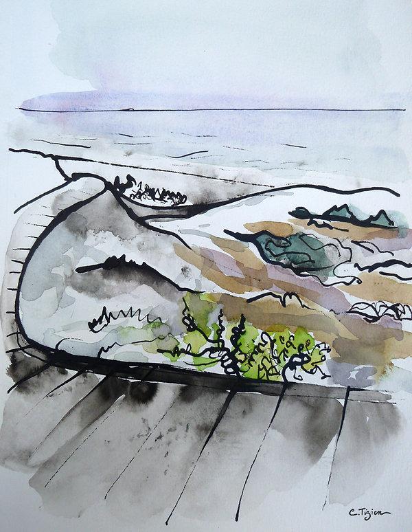 """""""Asylomar - Californie"""" Encre de chine et aquarelle.©TIZIEN"""