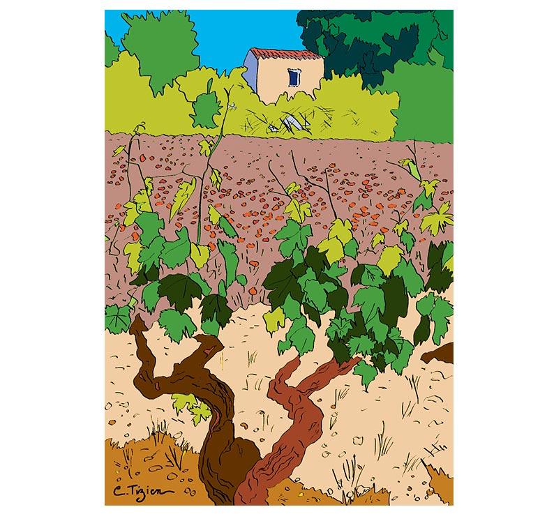 La vigne : H1