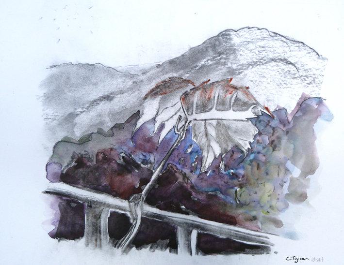 """La Serrane"" Fusain et aquarelle.©TIZIEN"