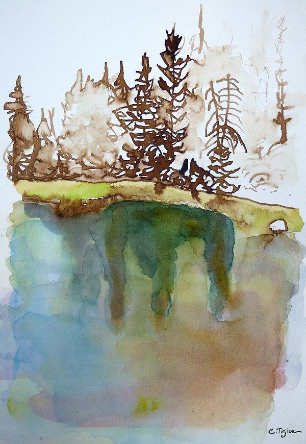 """""""Sierra Nevada"""" Brou de noix et aquarelle.©TIZIEN"""