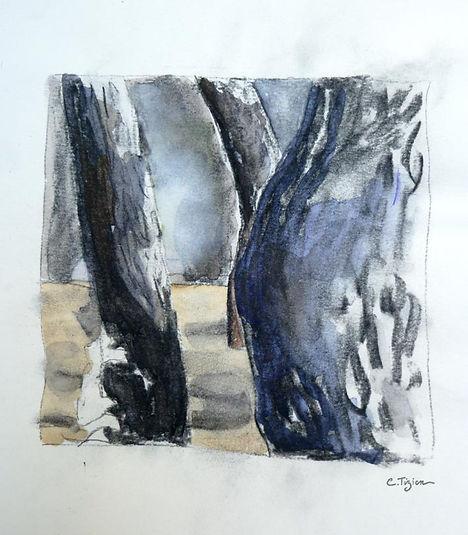Dessin au graphite, fusain et aquarelle.©TIZIEN