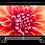"""Thumbnail: Arçelik A55 A 860 B / 4K Smart 55"""" 139 Ekran TV"""