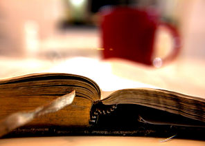 Bible_worn pages.jpg
