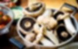 Mushroom_news.jpg