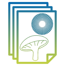 Flaticon_Spore Print_Draft 8.png