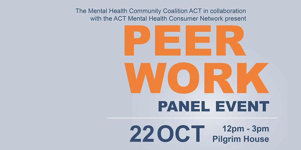 Peer Work Panel Event