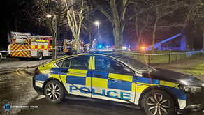 A man in his 20s dies after car hits tree and burst into flames.